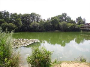 carp fishing lake